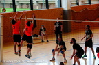 Volley Ball