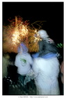 Alain MARIE 19970713 feux artifice Lannion 0002