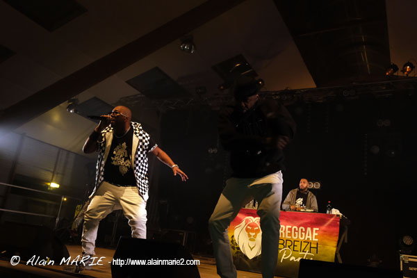 Alaiin_Marie_20190413_Reggae_breizh_party_neg_marrons_0063.jpg