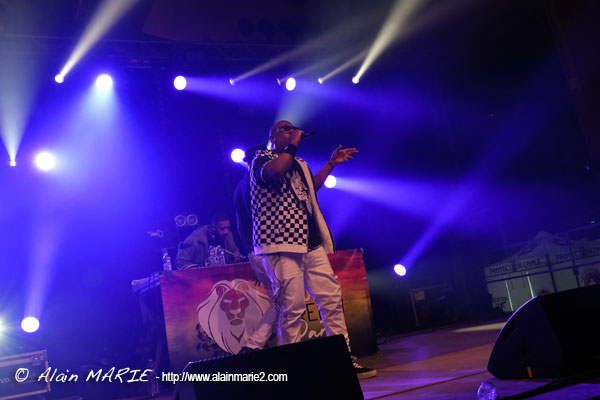 Alaiin_Marie_20190413_Reggae_breizh_party_neg_marrons_0180.jpg